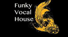 Funky Vocal House 34 [Soulified]